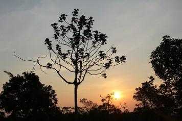 chapada dos guimarães por do sol